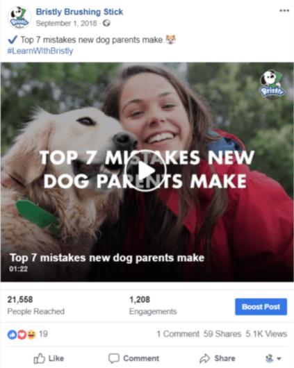 dog-toothbrush-facebook-video