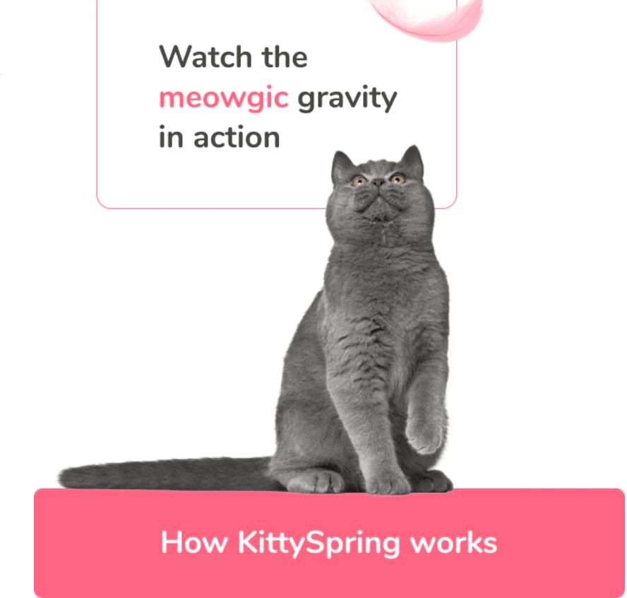 kittyspring kickstarter