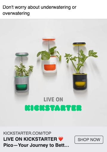Pico successful kickstarter